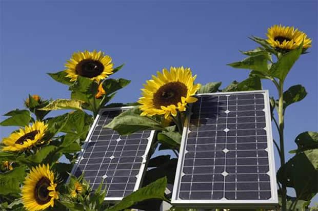 Poslovni skup o ulaganjima u solarnu energiju