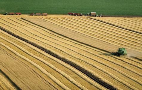 Zadruge na korak do svojih 50.000 hektara