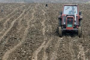 U Srbiji više njiva i traktora – manje ljudi i gazdinstava
