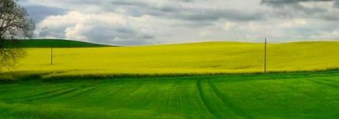 Pokrajina traži povlačenje izmena Zakona o poljoprivrednom zemljištu