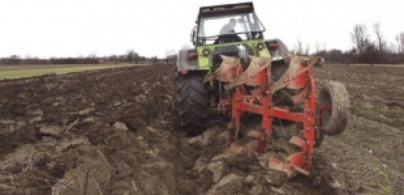 Realna agrarna strategija umesto nerealnih želja