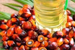 Industrija prešla na palmino ulje