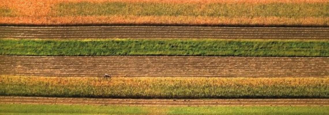 Porez na oranice od nule do 30 evra po hektaru