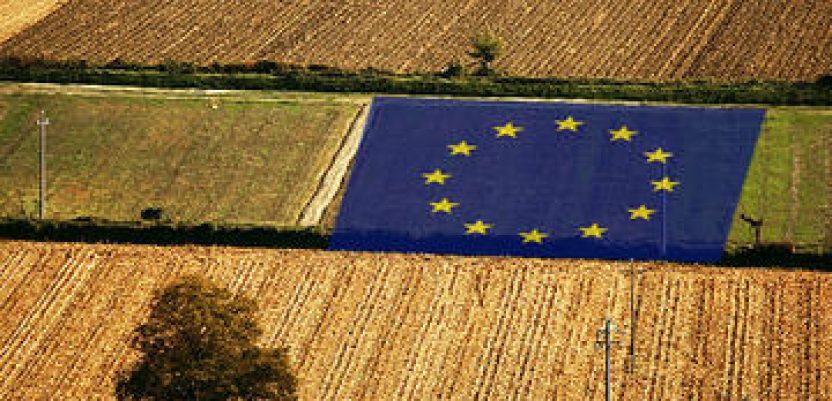 Protest poljoprivrednika u Sloveniji zbog agrarne politike EU