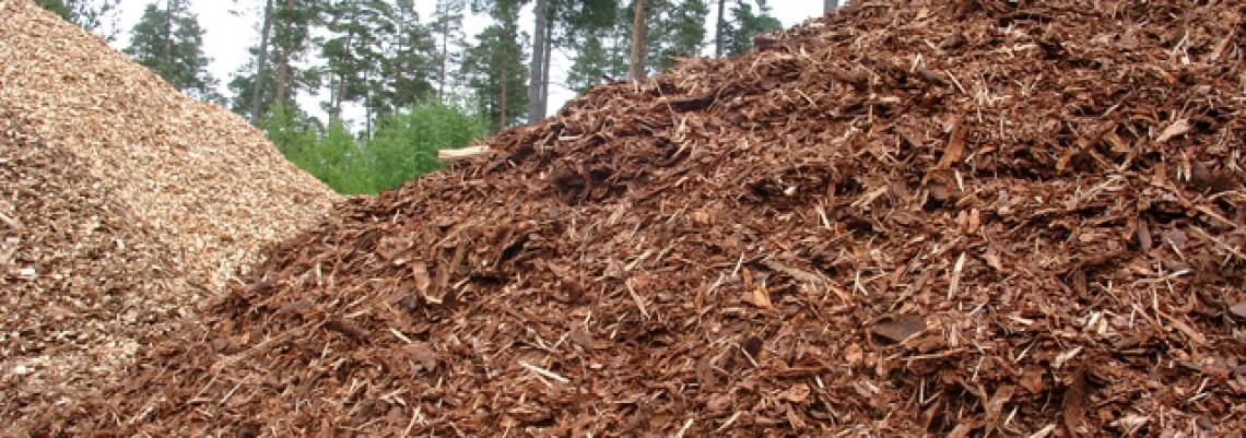 Trećina toplana bi mogla preći na biomasu