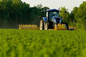 Treba učiti od holandskih farmera