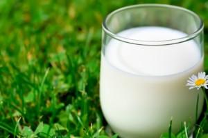 Farmeri se žale na smanjen otkup mleka