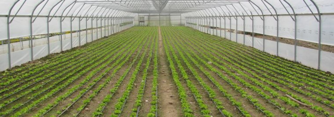 Dva miliona evra za kredite za poljoprivrednike