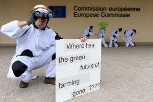 Is the new EU's Common Agricultural Policy Greener?