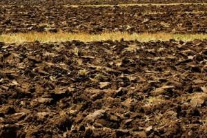 Hitno propisati posebne uslove za strance za kupovinu zemljišta