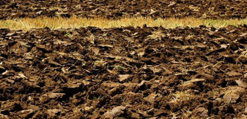 Zemljišta alarmatnom brzinom gube fosfor