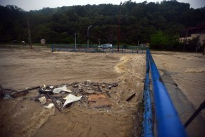 IMR poplavljen, šteta 200 miliona dinara