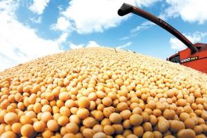 Maksimalna cena soje jer njome trguju i finansijski fondovi