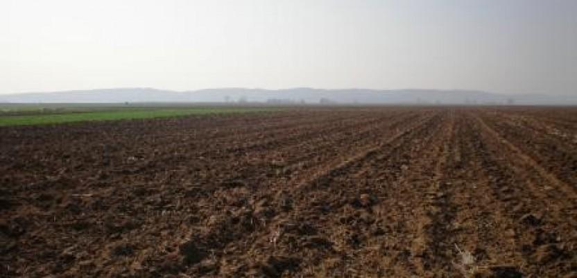 Vraćanje zemljišta starim vlasnicima ide sporo