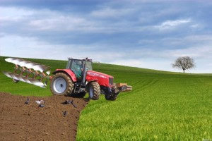 Džabe agraru strategija
