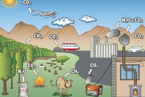 U Nemačkoj peticija za oznake o emisiji CO2 na pakovanjima hrane