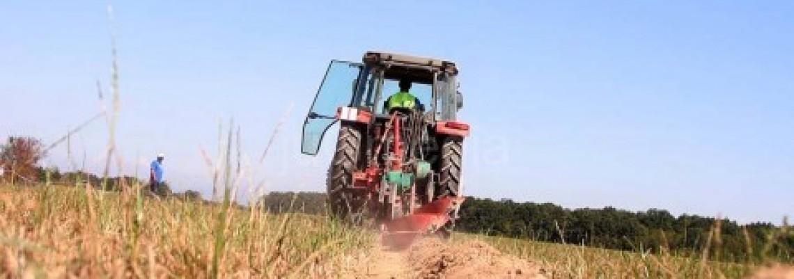 Srpska poljoprivreda zanimljiva strancima