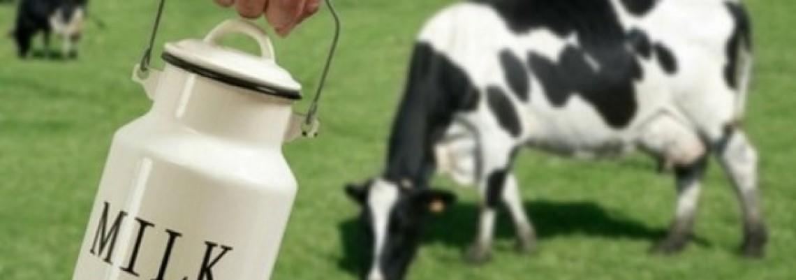Prelevmani na uvoz mesa i mleka ljute Brisel
