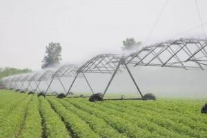 U EU 44 odsto vode odlazi na poljoprivredu