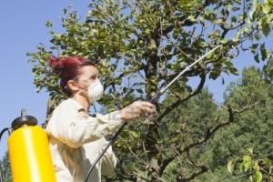 Uvodi se red u korišćenju pesticida