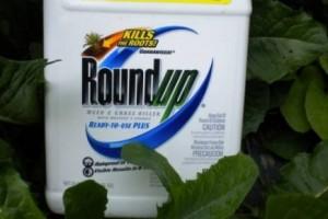 Francuska zabranjuje Monsantov herbicid