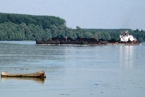 Plitak Dunav paorima prazni džepove