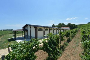 "Motel u vinogradu na ""Vinskom putu"" kroz Srbiju"
