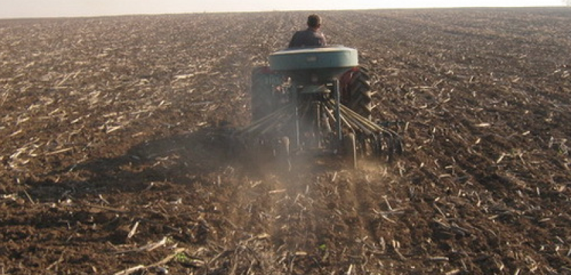 Poljoprivredno zemljište: Novom uredbom do novih povlastica?