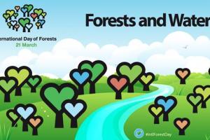 Za šume ove godine 750 miliona dinara