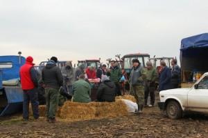Gakovo: Paori i dalje čuvaju njive