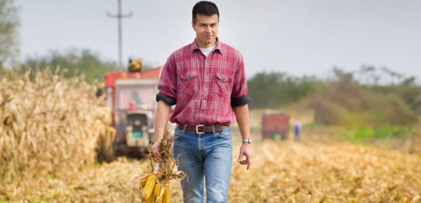 Za četiri godine tri puta više mladih poljoprivrednika