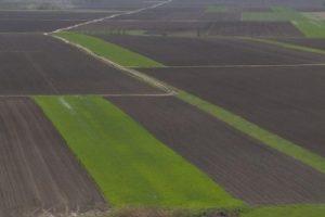 ZR: Dobra cena poljoprivrednog zemljišta