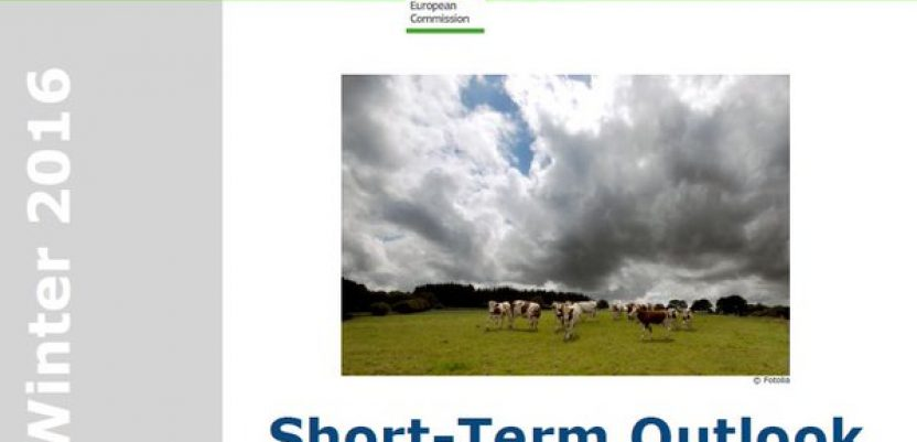 Short-term outlook for EU arable crops, dairy and meat markets
