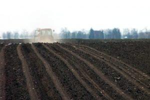 Subotica subvencioniše poljoprivredne kredite
