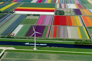 Holandija, najveći evropski izvoznik poljoprivrednih proizvoda