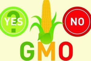 Izveštaj o napretku Srbije: IPARD suviše spor, bez pomaka u GMO regulativi