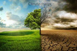 Pet izazova za zaustavljanje klimatskih promena