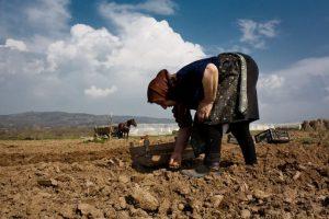 Od četiri žene na selu, tri rade besplatno