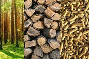 Biomasa važna kao jeftin i ekološki prihvatljiv energent