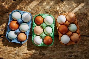 Dobrobit životinja poskupljuje proizvodnju jaja