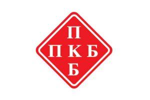 Nedimović: Još nije doneta strategija za privatizaciju PKB