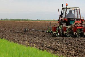 Grad Beograd raspisao konkurs za podsticaje u poljoprivredi