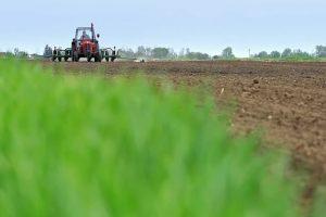 Niš: Ove godine 50% više novca za subvencije poljoprivrednicima