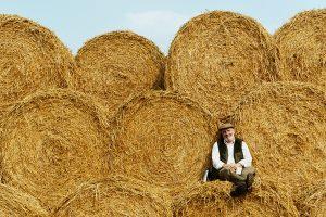 CAS banka partner Sajma poljoprivrede u Novom Sadu