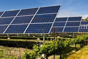 Bespovratno 25 miliona za solarne panele na farmama