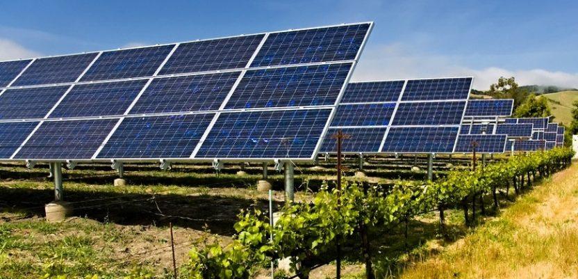 Očekuje se bum u primeni solarnih panela