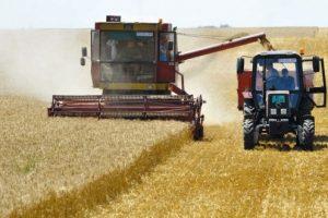 Njive pune kombajna i traktora