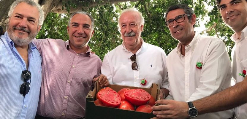 U Španiji kutija paradajza prodata za 2.700 evra