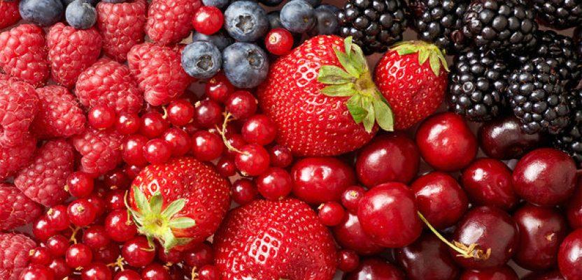 Nove mogućnosti za izvoz srpskog voća i povrća u SAD