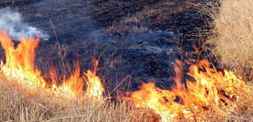 Obuka poljoprivrednika o protivpožarnoj zaštiti za vreme žetve